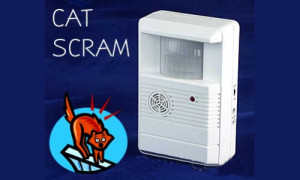 Cat Watch Ultrasonic Deterrent Review - Cats Away