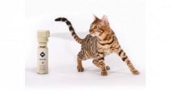 SSSCAT Cat Training Aid