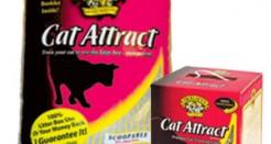 Cat Attract