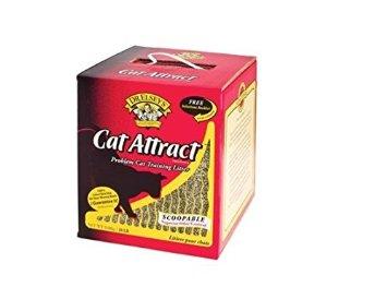 Cat Attract Best Cat Repellent Guide