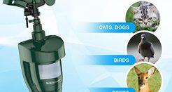 Hoont Cobra Upgraded Sprinkler Cat Repeller